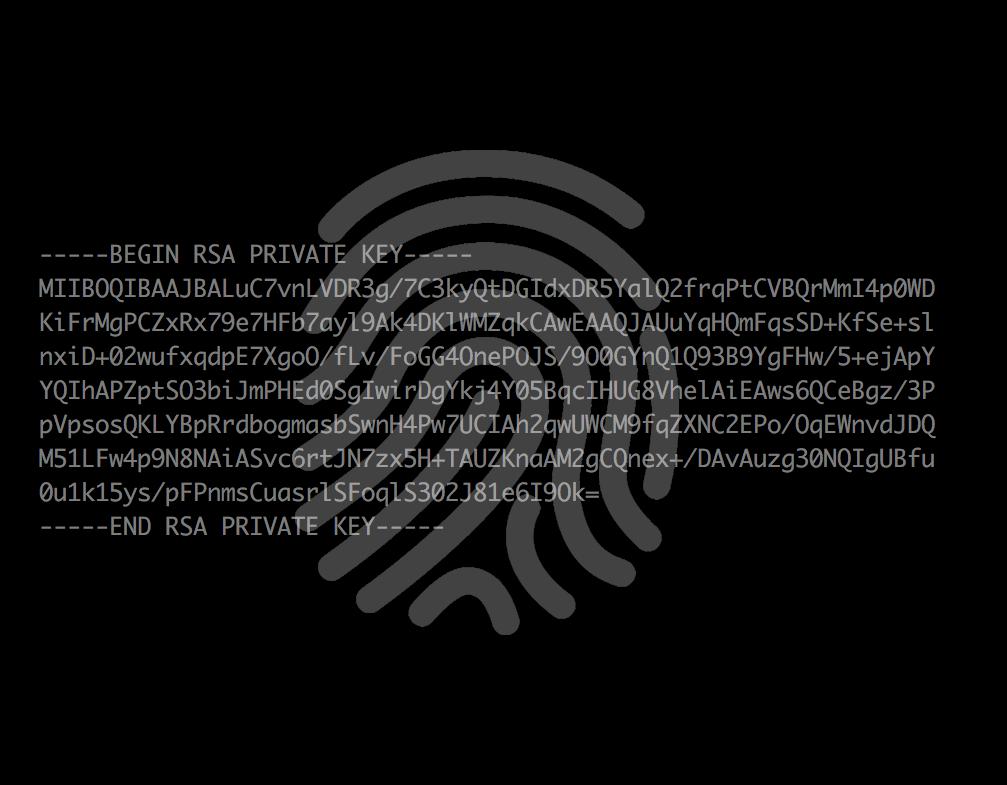 RSA fingeravtryck