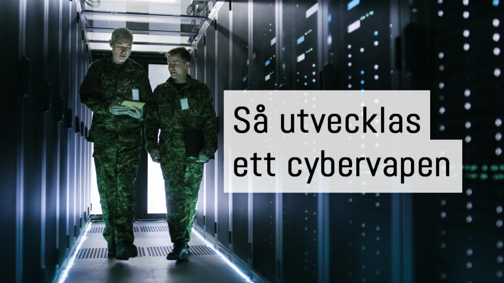 Cybervapen i ett cyberkrig